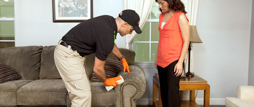 Goldsboro, NC carpet upholstery cleaning